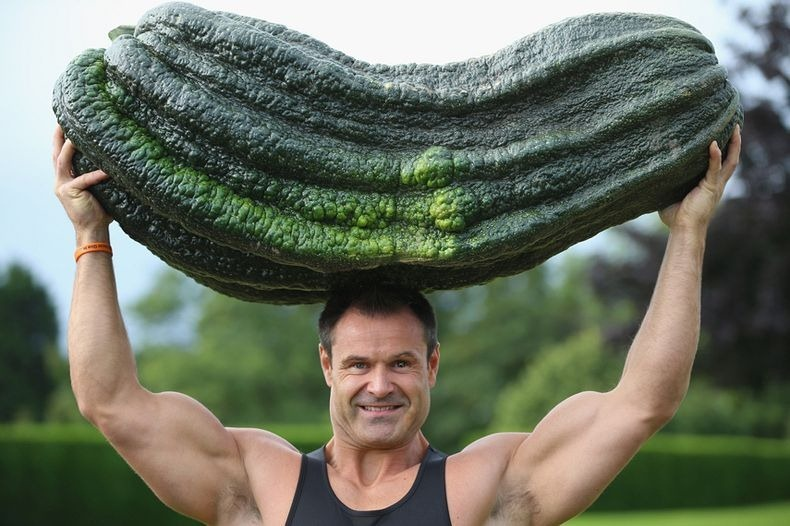 Large Vegetables 49