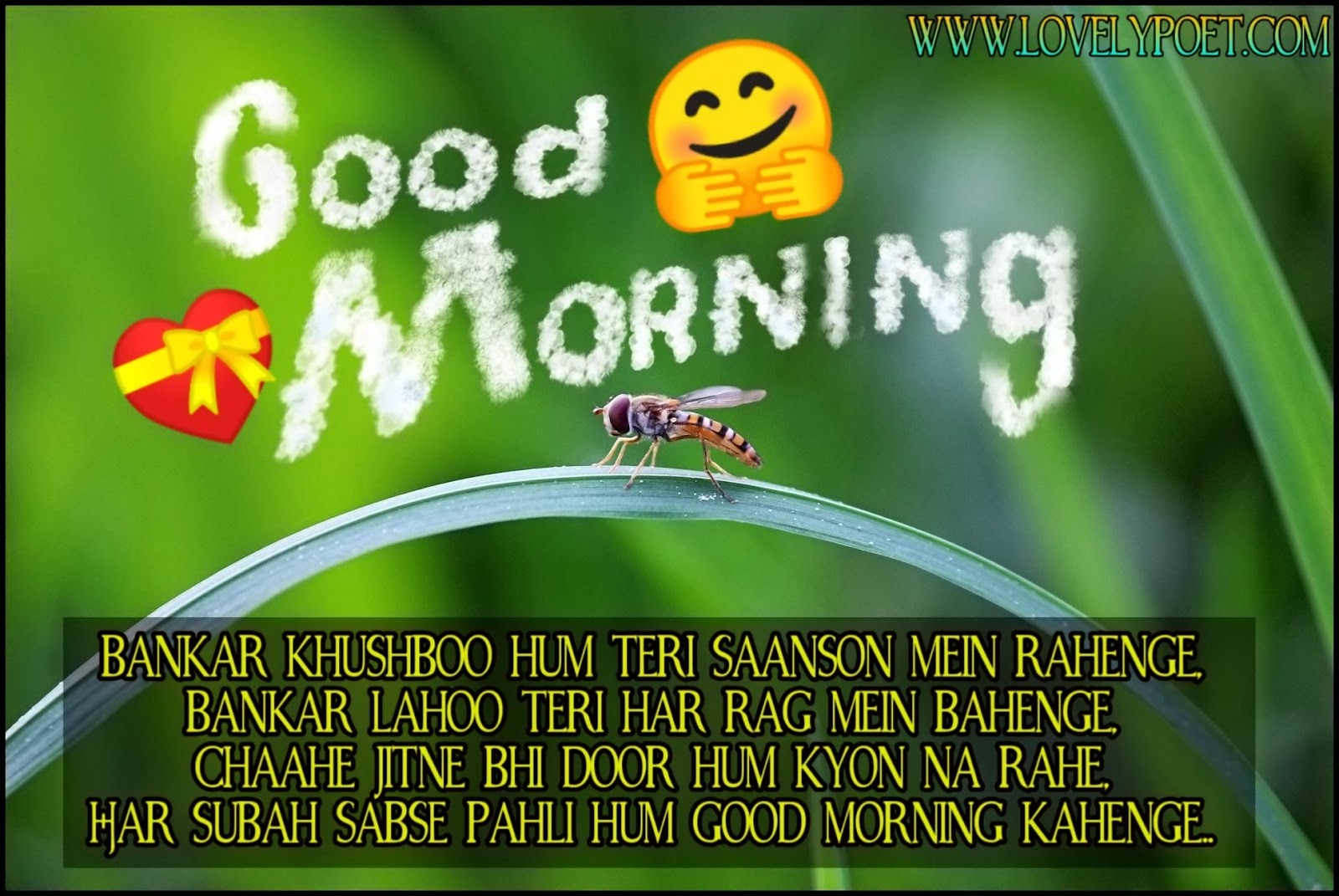 good-morning-quotes-in-hindi-for-friends