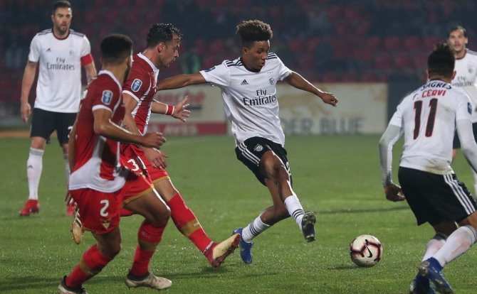 Benfica Gedson Fernandes