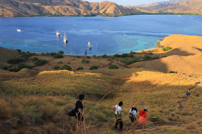 10 Best Places to Visit in Komodo