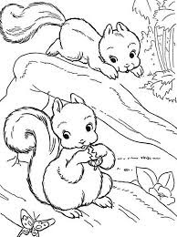 Adorable Two Baby Squirrel Coloring Sheet For Print