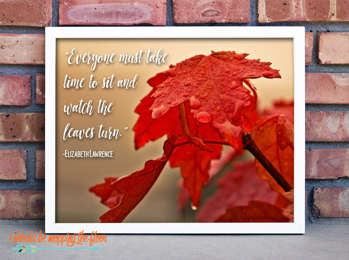 Elizabeth Lawrence Autumn Quote