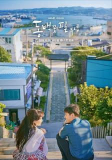 review drama korea when the camellia blooms genre romance, komedi, thriller tentang ibu tunggal yang jadi saksi pembunuhan berantai