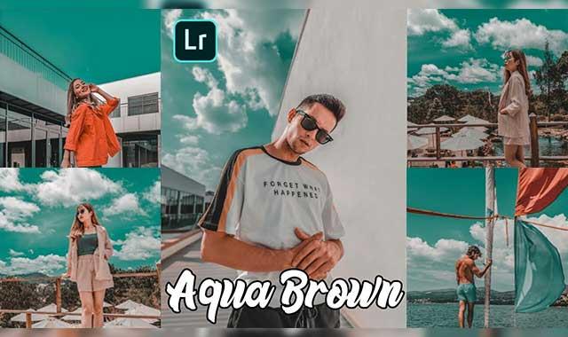 Aqua & Brown lightroom preset