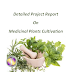 Project Report on Medicinal Plants Cultivation