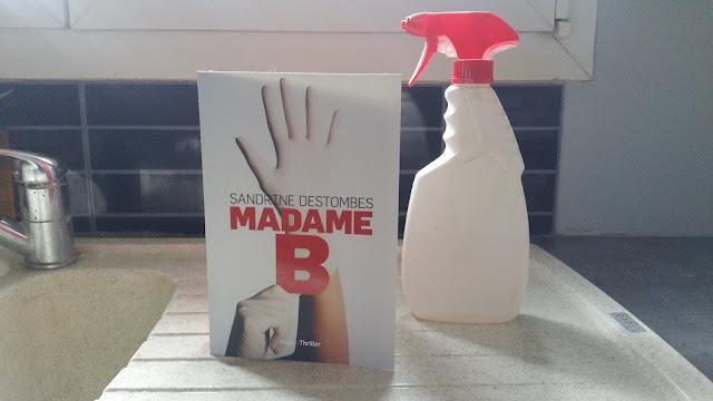 Madame B Sandrine Destombes  avis chronique happybooks