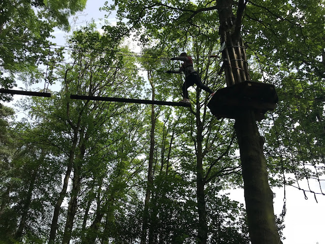 daughter on a high rope high in the tress at Go Ape