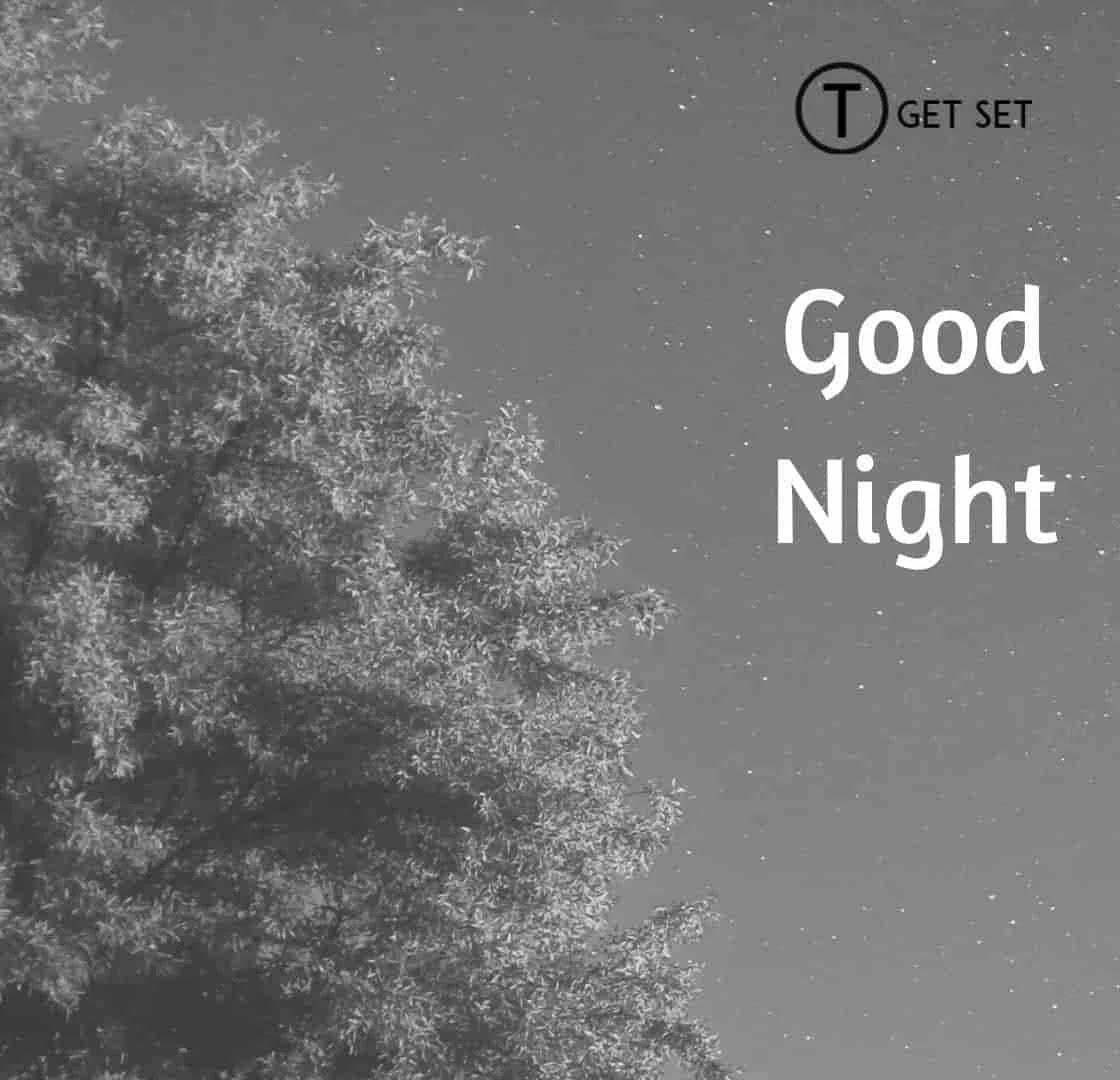 good-night-image-alone-tree