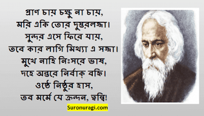 https://www.suronuragi.com/2021/06/pran-chay-chokkhu-na-chay-lyrics.html