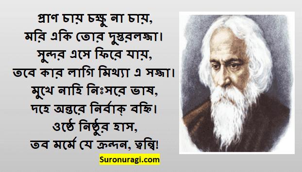 Pran Chay Chokkhu Na Chay Lyrics | প্রাণ চায় চক্ষু না চায় লিরিক্স