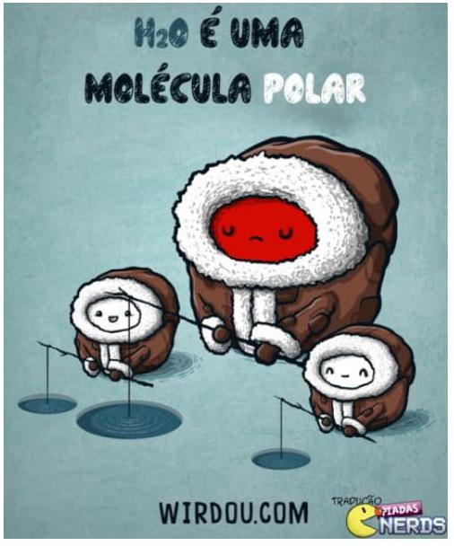 h2o é uma molécula polar