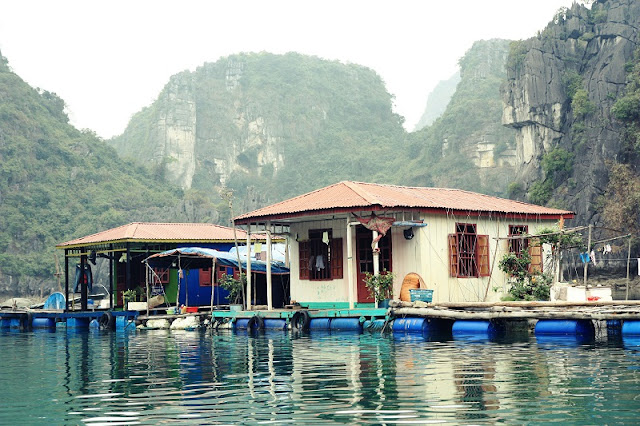 Why Visiting Halong Bay Is A Once In A Lifetime Opportunity? 3
