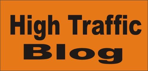 steps to managing High Traffic WordPress Blog