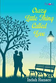 Download Novel Crazy Little Thing Called Love PDF Indah Hanaco