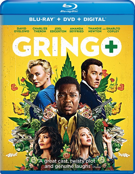 Gringo: Se Busca Vivo o Muerto (2018) 1080p BluRay REMUX 30GB mkv Dual Audio DTS-HD 5.1 ch