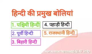 हिन्दी भाषा की प्रमुख बोलियां | हिन्दी भाषा एवं बोलियां