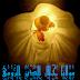 26 - فهرس الموضوعات المثنوي المعنوي جلال الدين الرومي الجزء الثالث ترجمة وشرح د. إبراهيم الدسوقي شتا