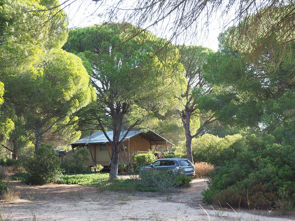 Jabalina Country Tents: Glamping en la Dehesa de las Yeguas de Cádiz1