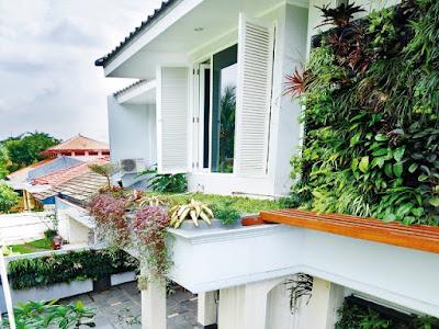 Tukang taman Suarabaya Gambar Vertical Garden (Living Wall, Green Wall/Taman Vega) Teks alternatif