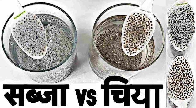Chia Seeds In Marathi Name | Benefits Of Chia Seeds In Marathi Meaning India