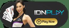 Idnplay online