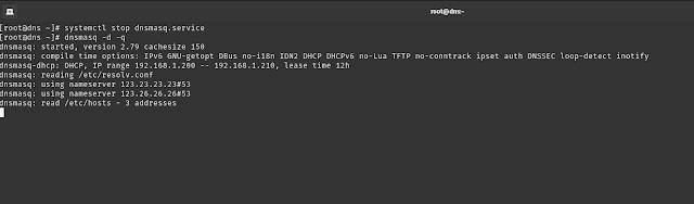 Sử dụng Domain Information Groper (dig) và cách debug cơ bản dnsmasq