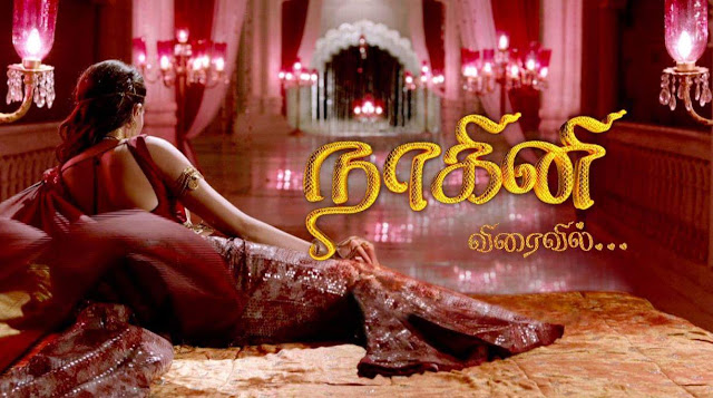 'NaagaKanni' Serial on Sun TV Plot Wiki,Cast,Promo,Title Song,Timing