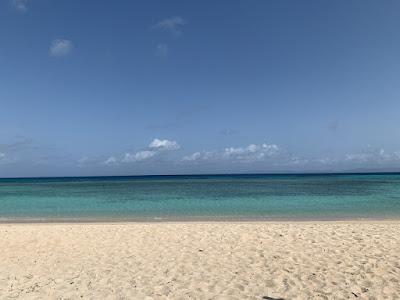 ニシ浜その3