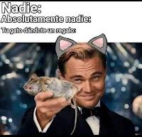 gato trae raton muerto humor meme