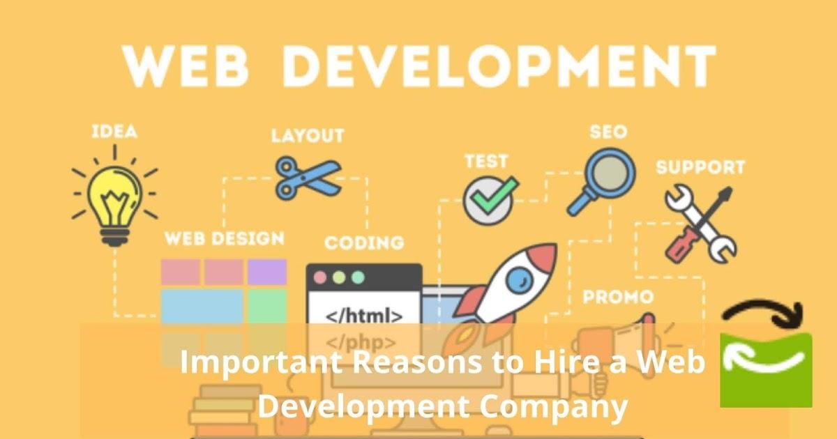 Important Reasons to Hire a Professional Web Development Company