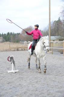 working equitation, riitta reissaa, katarina albrecht