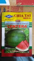 daur hidup tanaman semangka, semangka non biji, benih lentera f1, cap kapal terbang, jual benih semangka non biji, toko pertanian, toko online, lmga agro
