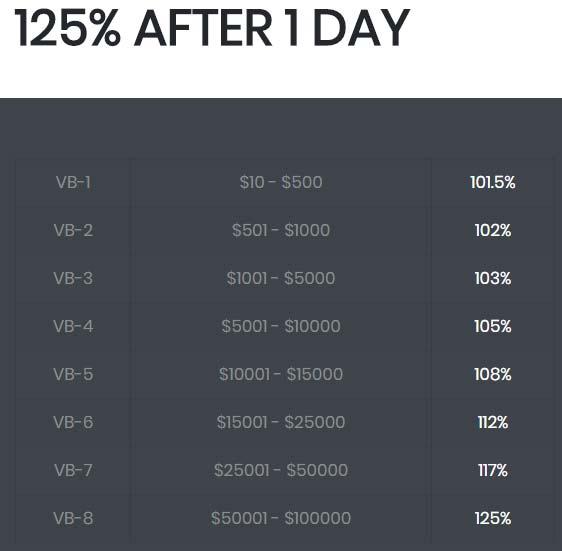Инвестиционные планы ValleyBit