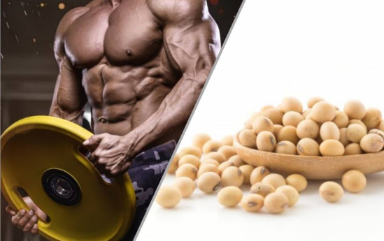 Benefits of soy for bodybuilding