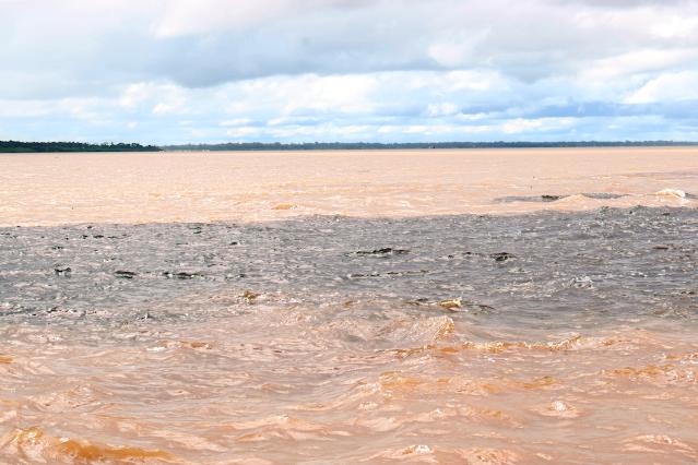 agua de um rio de duas cores marrom e preta