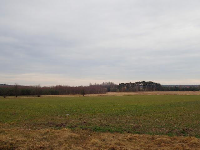 Krajobraz środkowej Polski