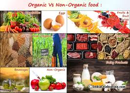 The Great Benefits of Organic Food