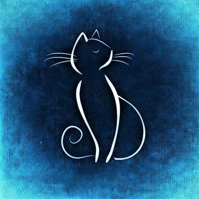 Cat HD Logo