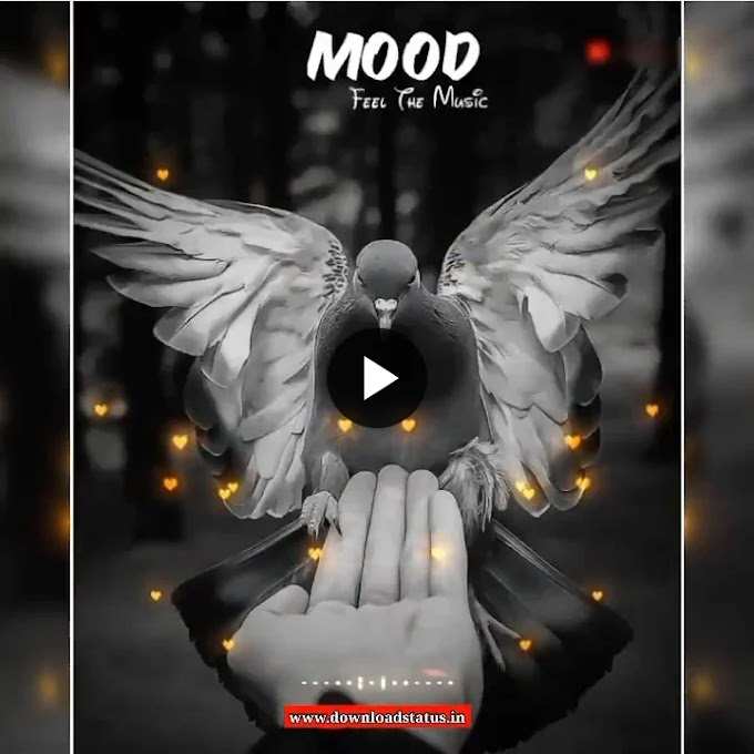 [Top 10+] Mood Change Love Status Video Free Download For Whatsapp