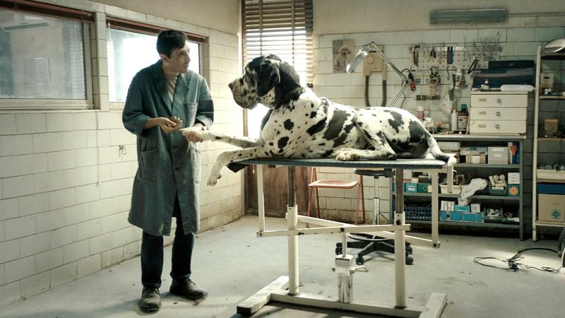 Το Dogman του Ματέο Γκαρόνε στην Κινηματογραφική Λέσχη Αλεξανδρούπολης