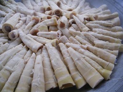 不吃肥,不嗑藥的麻竹筍採收實錄