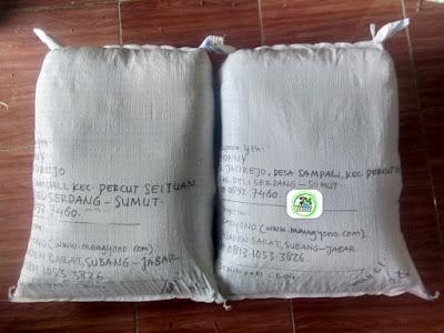 Benih Padi Pesanan   JHONNY Deliserdang, Sumut.   (Setelah di Packing).