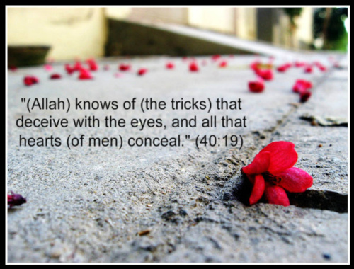 Allah Quotes: He knows of (the tricks) that deceive with the eyes