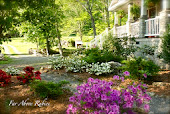 Natural landscaping on a budget