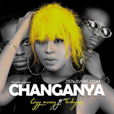 Download Audio | Gigy Money ft Tushynne - Changanya