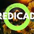 Língua Portuguesa: O que é Predicado