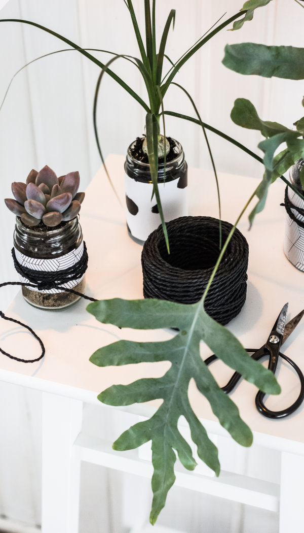 Upcycling DIY: Ein kleiner Urban Jungle und 10 Ideen, Plastik im Alltag zu vermeiden von titatoni.de