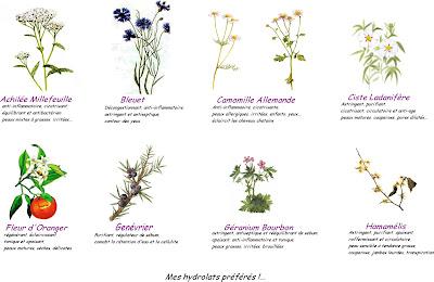 affiche poster hydrolats et eaux de fleurs aromatiques