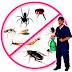 شركة مكافحة حشرات ورش مبيدات فعالة بالاحساء