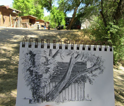 pen sketch shed tree rural wheeler farm